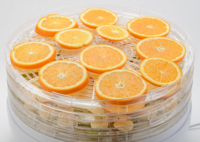 Orange cirklar fördelade i tork royaltyfri foto
