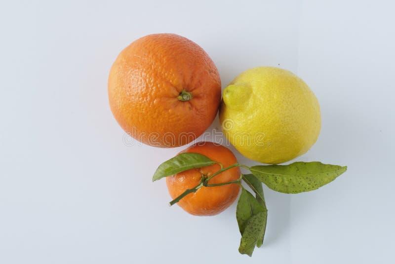 Orange, citron et mandarine méditerranéens image libre de droits