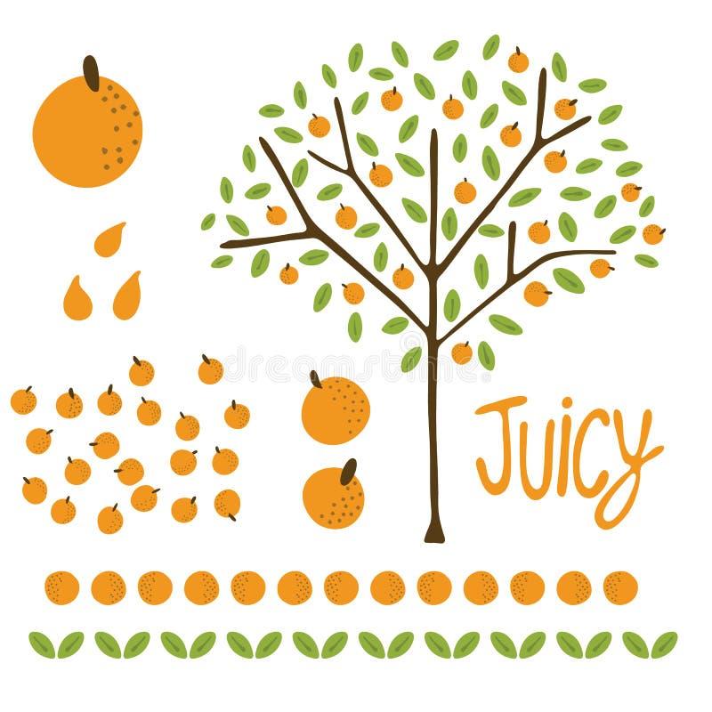 Orange citrusfruktträd för vektor med sidor royaltyfri illustrationer