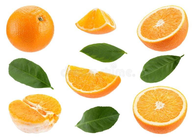 Orange citrusfruktuppsättning fotografering för bildbyråer