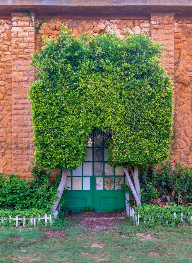 Orange colored bricks stone wall with grunge green metal grid door covered with arched tree, green grass, and plants stock image