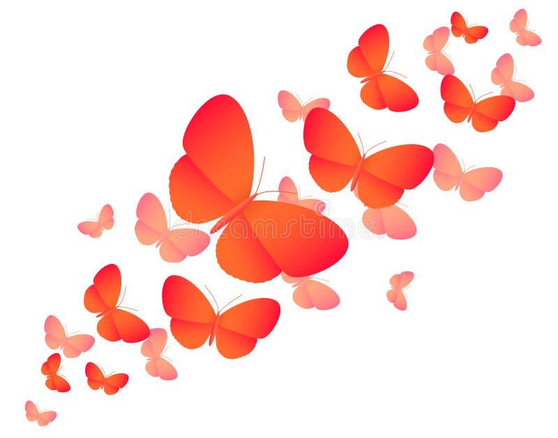 Orange colored butterflies on white - illustratio stock illustration