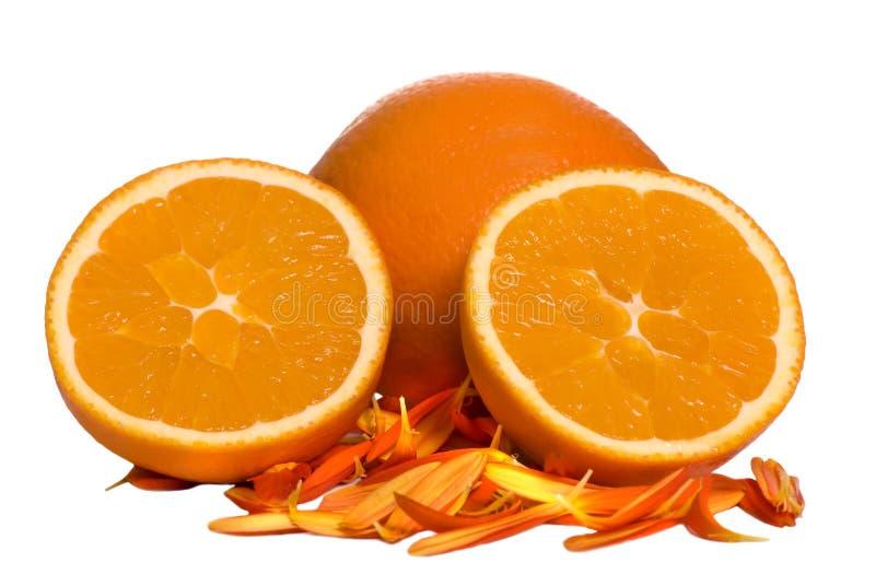 Orange coupée en tranches images libres de droits