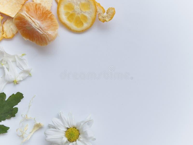 Orange coupée en tranches sur le fond blanc et disposée sur la taille de main gauche du cadre photos stock