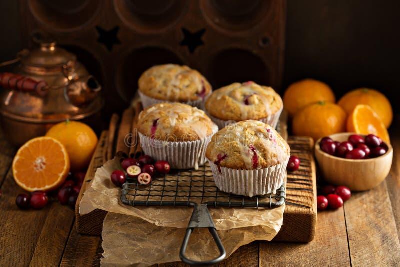 Download Orange cranberry muffins stock image. Image of cake, horizontal - 83724655