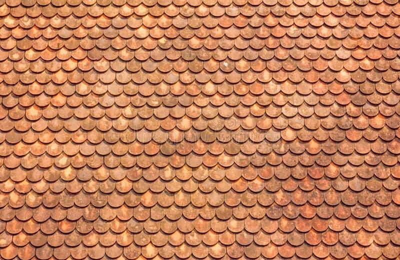 Orange Dach-Fliesen stockbilder