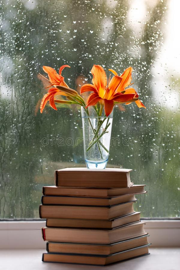Orange daylilyblommor i en vas som står på böcker Ett fönster med regndroppar bakgrund suddighet green Sommar arkivfoto