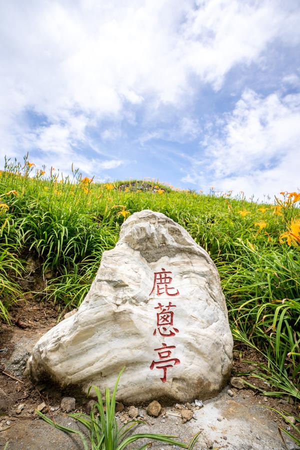 The Orange daylilyTawny daylily flower farm at Sixty Rock MountainLiushidan mountain with blue sky and cloud, Fuli, Hualien. Hualian, Taiwan August 13, 2018: The royalty free stock photos