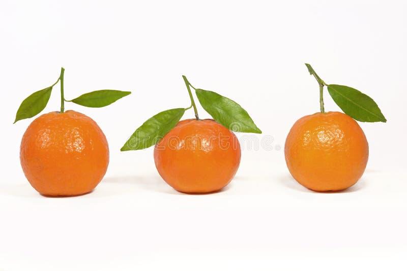 orange de clémentine photo libre de droits