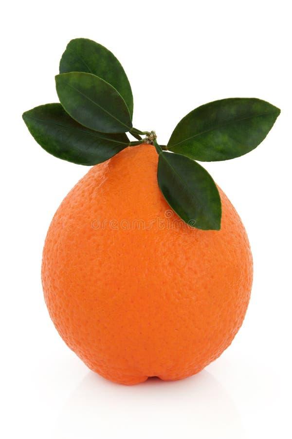Orange de Valence photos stock