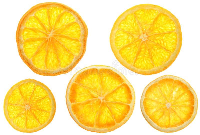 Orange de XL dans des carreaux photographie stock