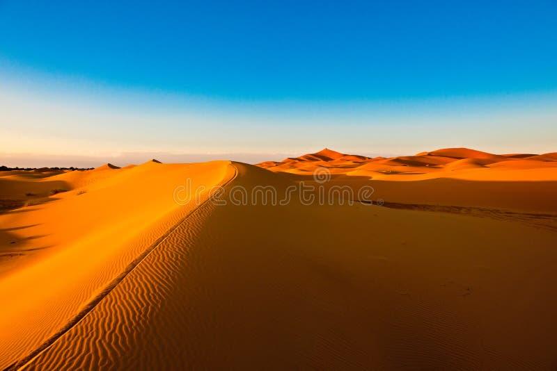 Orange dynkant med riffles i öknen av Sahara, Marocko royaltyfri fotografi