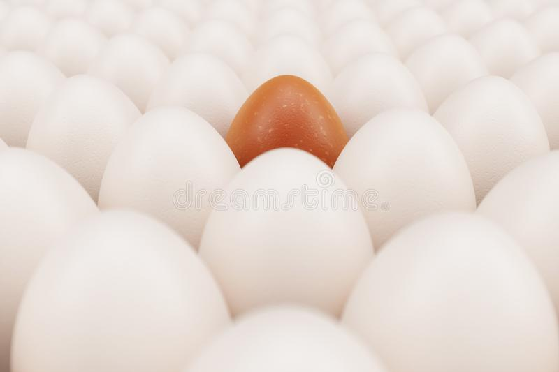 Orange egg in a centre. Background of white chicken eggs with one orange egg. Symbol of easter, holidays. Concept happy stock images