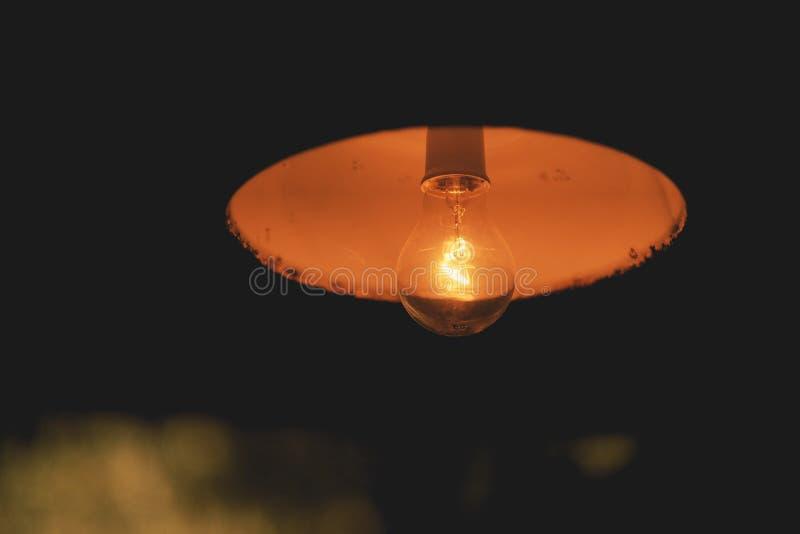 Orange electric light in cafe. Vintage, design, decoration, black, lamp, bulb, hanging, decorative, background, electricity, illumination, illuminated, bright stock photos