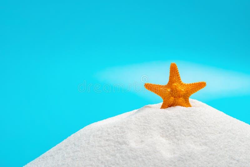 Orange färgsjöstjärna på vit sand på blått begrepp av sommarsemestrar arkivbild