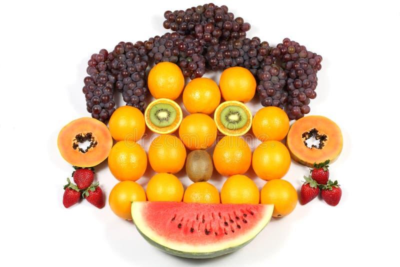Download Orange Face stock image. Image of ripe, food, refreshment - 11017579