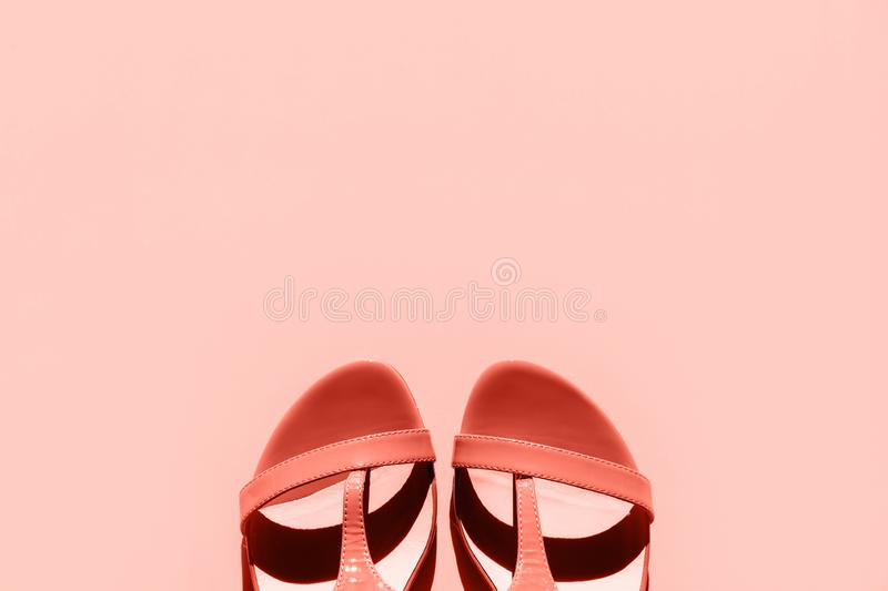 Orange fashionable women`s sandals on a pink background. royalty free stock photography