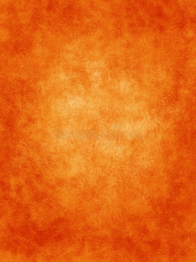 Orange With Ferns Background Royalty Free Stock Photography