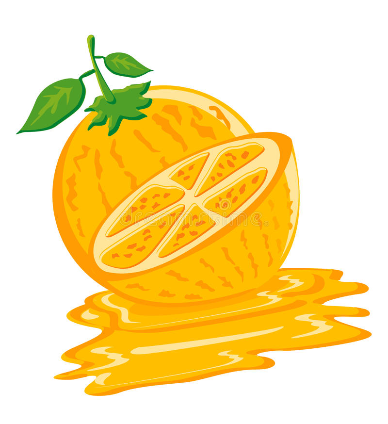 Orange flavor. Used by vector can used it for icon of food or drink product vector illustration