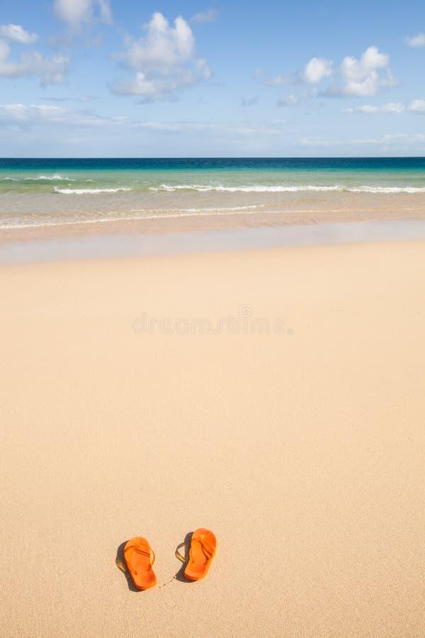 Orange flip-flops at the beach stock photos