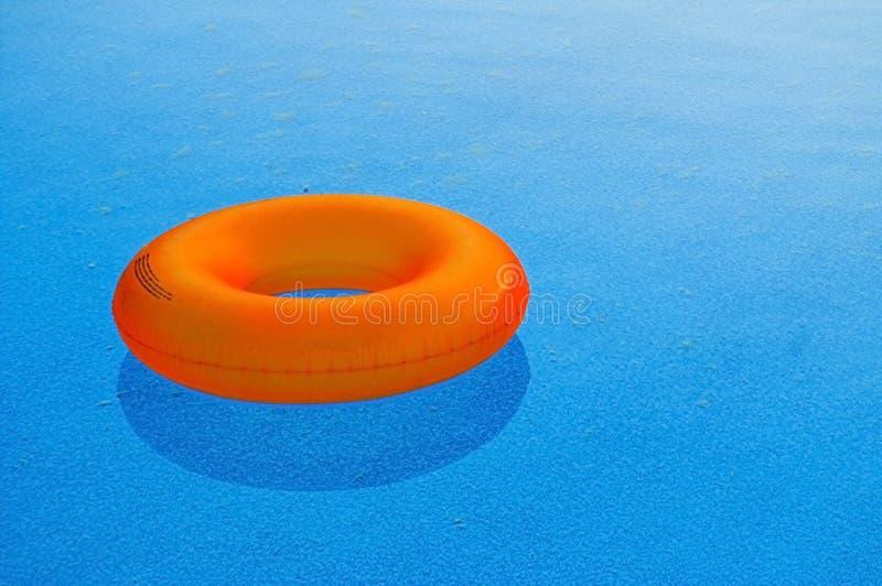 Download Orange Float stock photo. Image of still, water, swim - 2946260