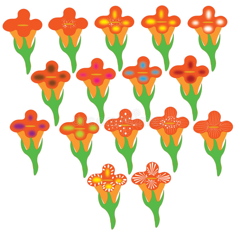Orange flower group one stock photos
