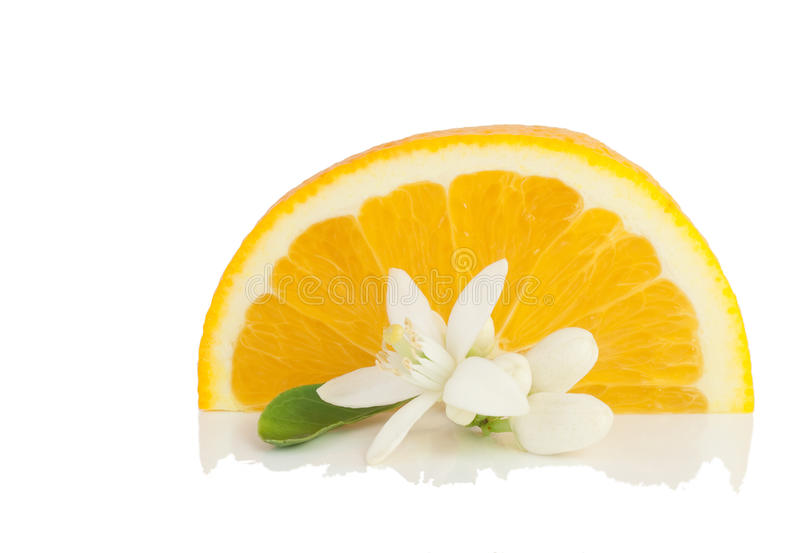 Orange, flower and slice. stock images