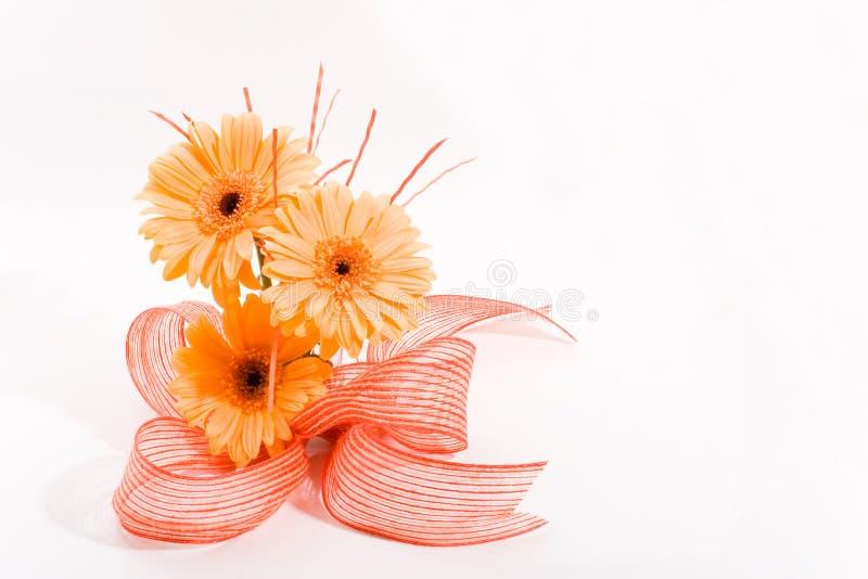Orange flowers arrangement stock images