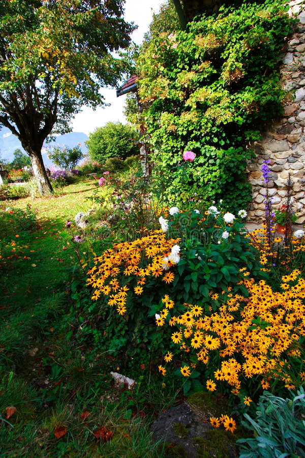 Orange flowers in a garden. Beautiful orange flowers in a garden, near a stoned-built house royalty free stock photos