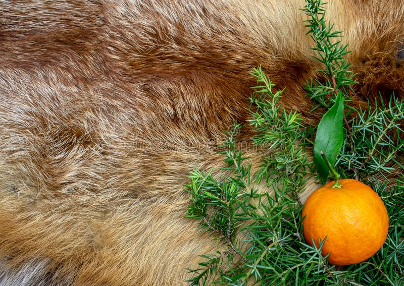 Orange fox fur new year winter holiday christmas. Card royalty free stock photo