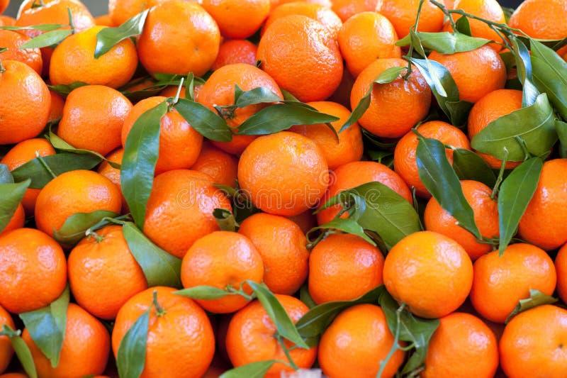 Orange Früchte stockfoto