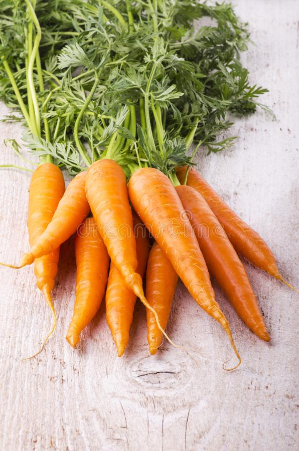 Fresh carrots with green tuft. Orange fresh carrots with green tuft on light wood table stock images