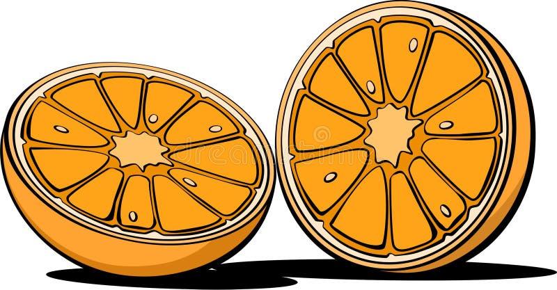 Orange Frucht-Illustrations-Bild-Vorrat stockfotos