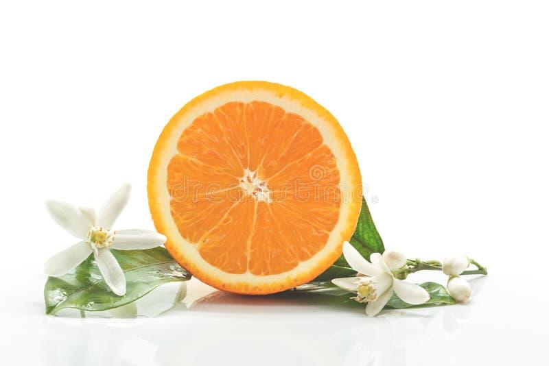 Orange Frucht mit den Blättern und Blüte lokalisiert auf einem weißen backgro lizenzfreie stockfotos