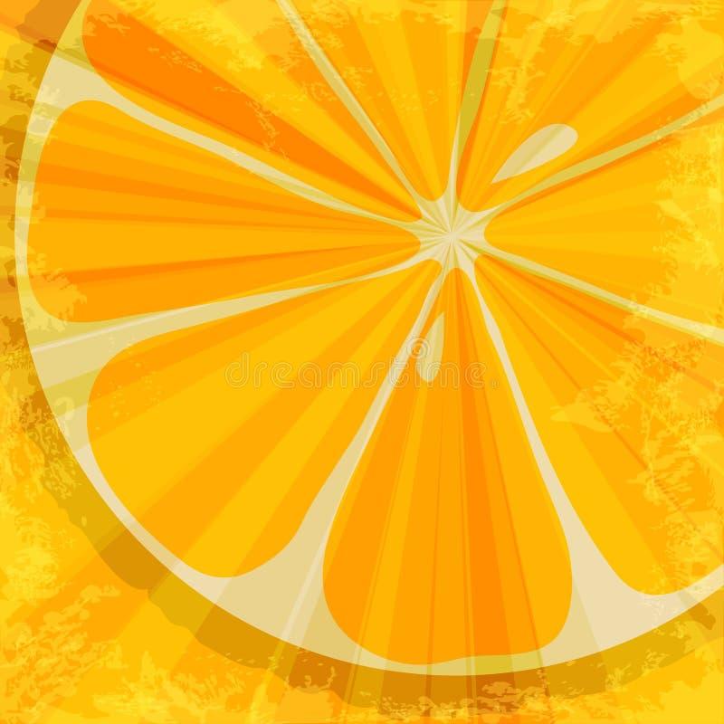 Orange fruit background vector illustration