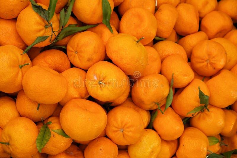 Orange fruit display at farmers market background royalty free stock photo