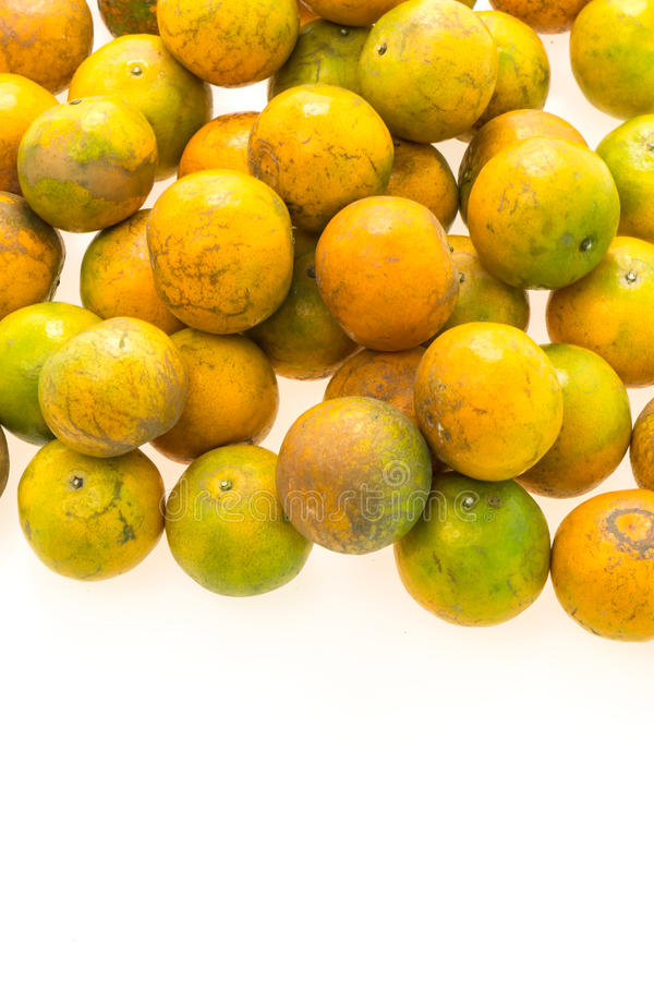 Orange fruit. Isolated on white background stock photography