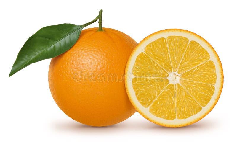 Orange fruit and leaf illustration stock illustration