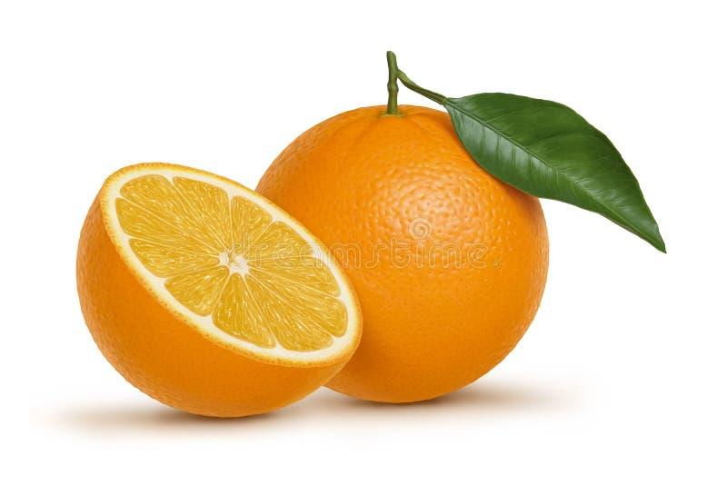 Orange fruit and leaf illustration royalty free illustration