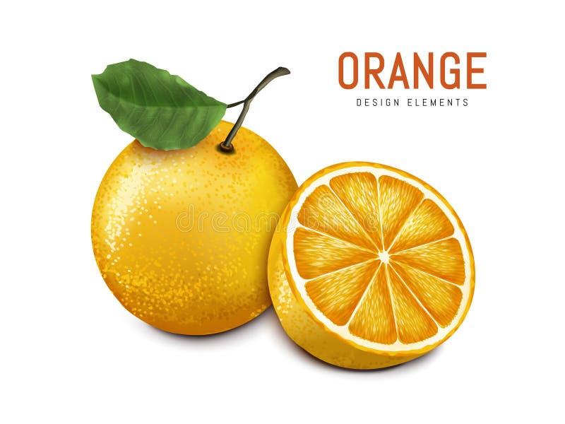 Orange with fruit meat. Oranges with one sliced, isolated on white background, 3d illustration stock illustration