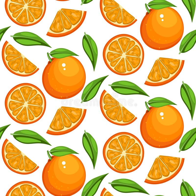 Orange fruit pattern. Sweet sweet vintage beautiful citrus seamless background with yellow vector illustration