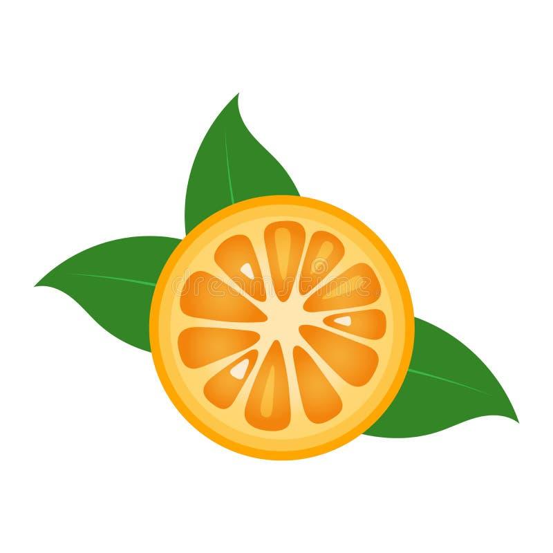 Orange fruit slice closeup icon, round piece of orange. Logo design, flat vector illustration. Orange fruit slice closeup icon, round piece of orange. Logo vector illustration