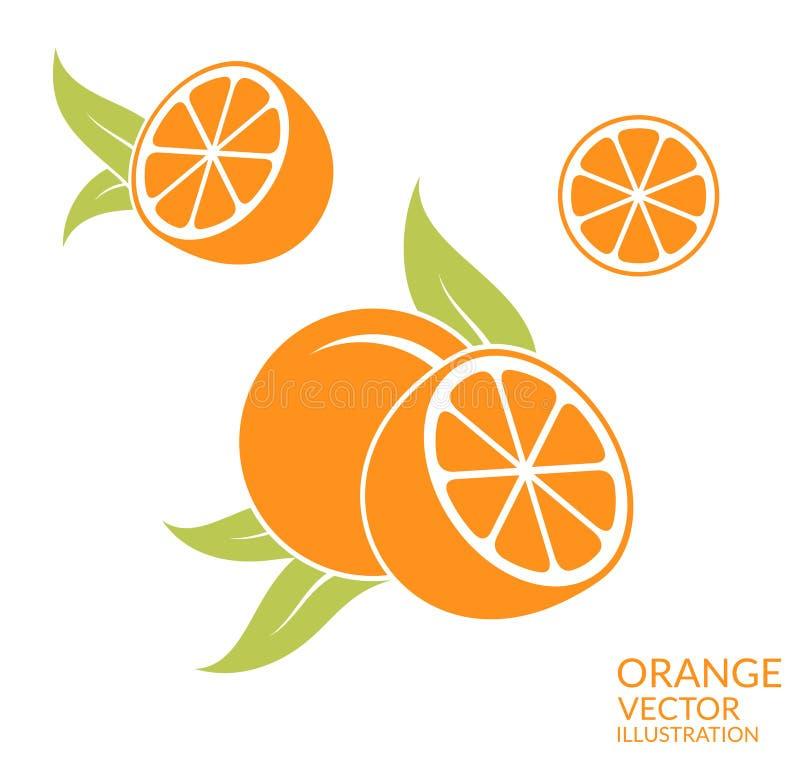 Orange Fruit sur le fond blanc illustration de vecteur