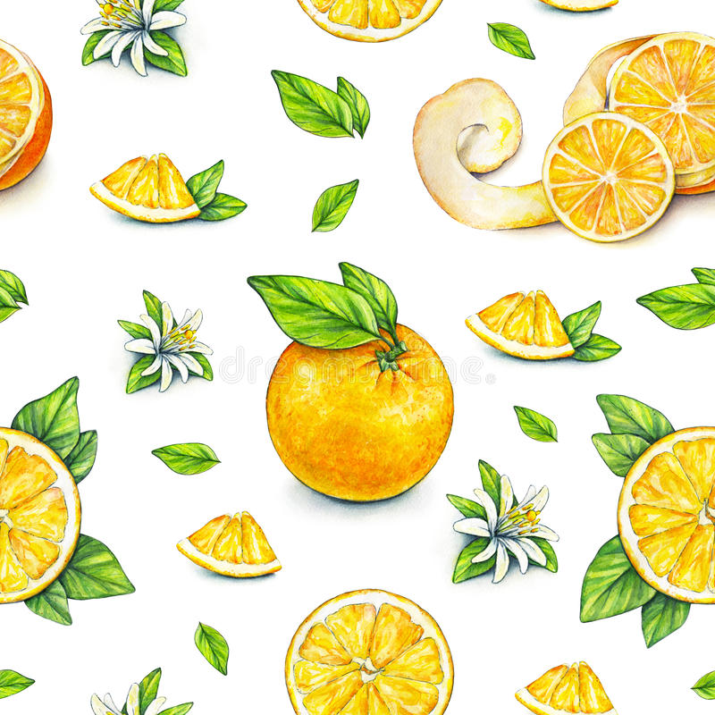 Orange fruits ripe with green leaves. Watercolor drawing. Handwork. Tropical fruit. Healthy food. Seamless pattern for design stock illustration