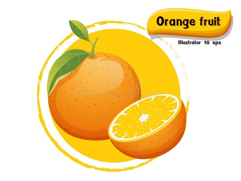 Orange frukt för vektor som isoleras på färgbakgrund, illustratör 10 eps arkivbilder