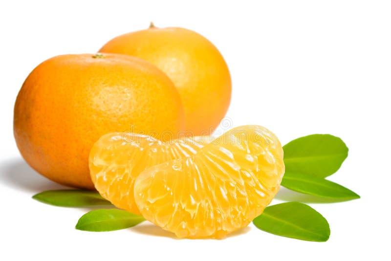 Orange frukt- och apelsinsegment royaltyfria bilder
