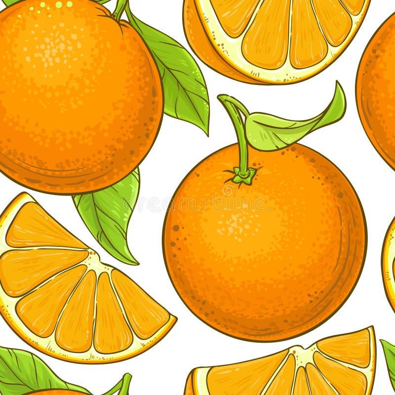 Orange fruktvektormodell royaltyfri illustrationer