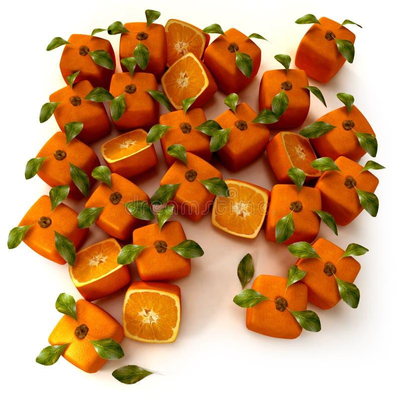 Orange Garden Royalty Free Stock Photo