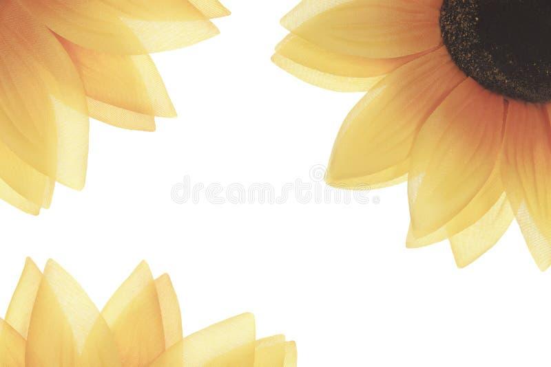 Orange genomskinlig blomma med glödande partiklar royaltyfri fotografi