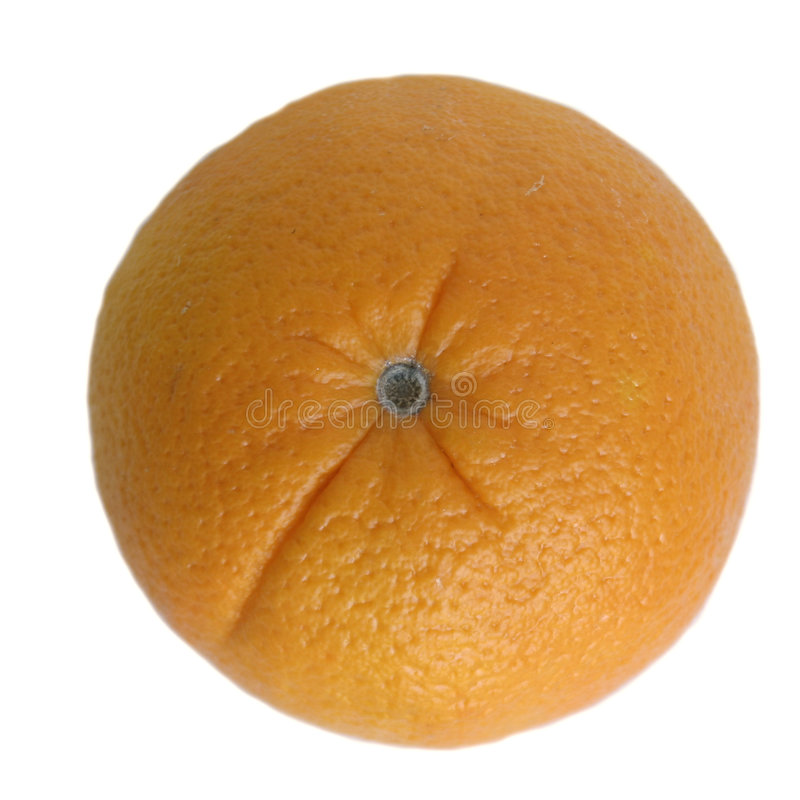 Orange getrennt auf Weiß lizenzfreies stockfoto